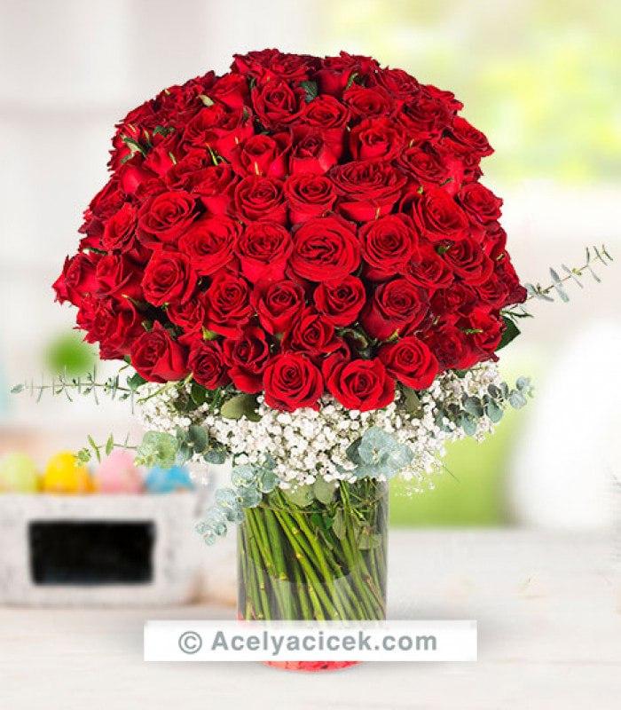 Hundred Kırmızı Gül Aşkı