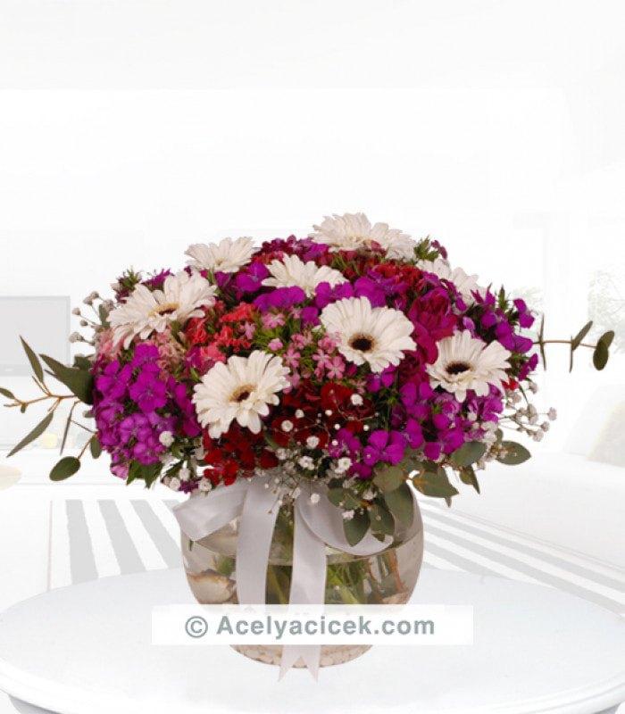 Karışık Mevsim Çiçekleri