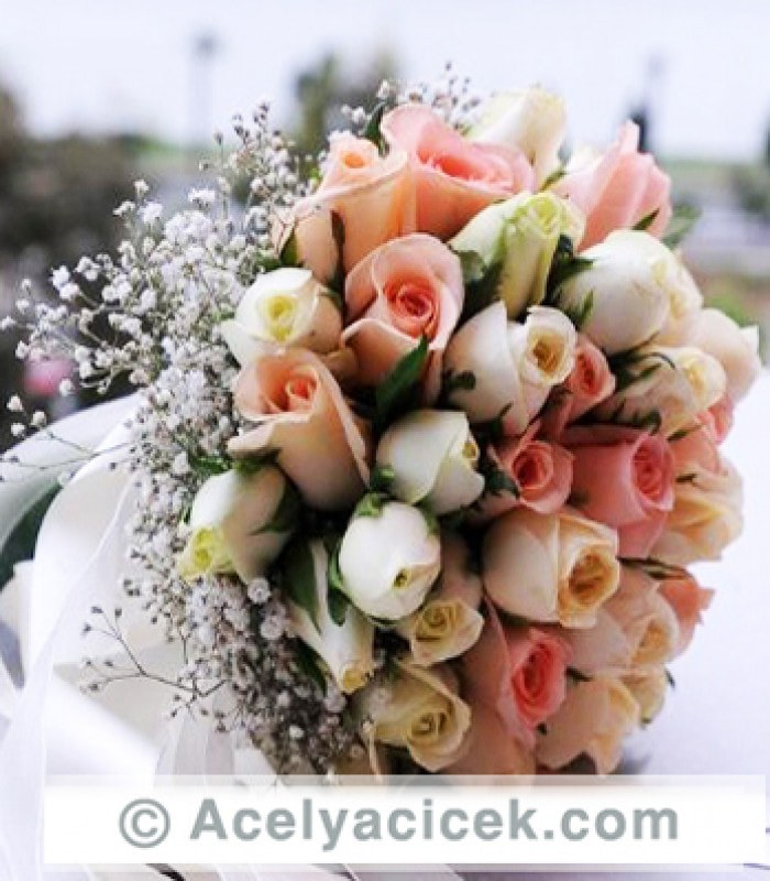 Canlı Gelin El Çiçeği