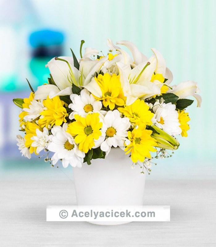 Papatya Çiçeğim
