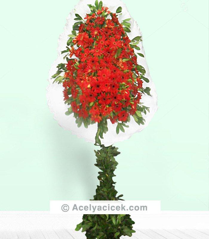 Kırmızı Gerberalı