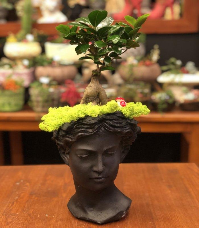 Bonsai Minyatür Ağaç Heykelcik