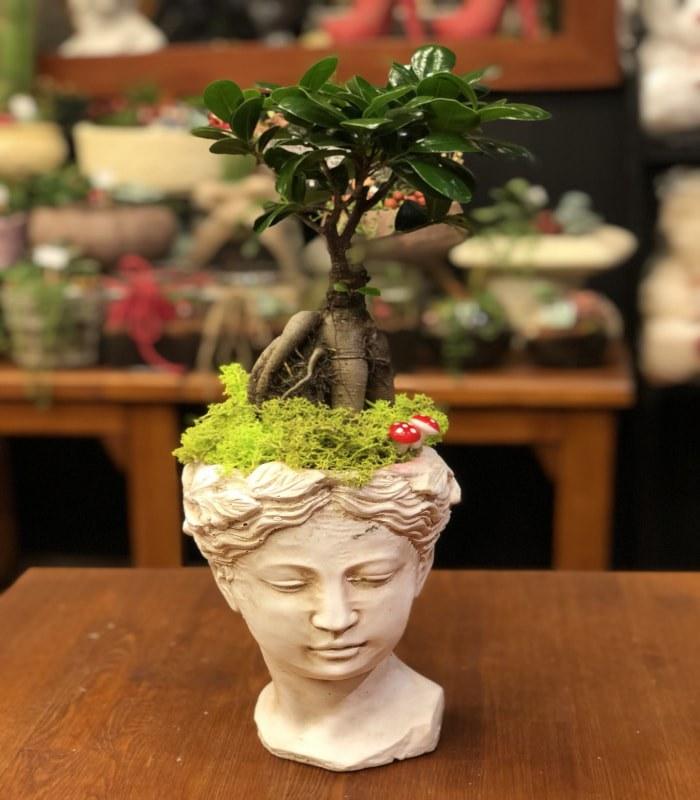 Bonsai Minyatür Ağaç Beyaz Heykelcik