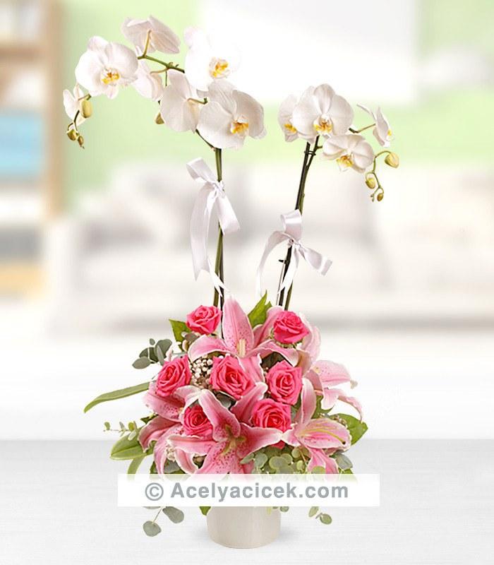 Pembe Orkideli Aranjman