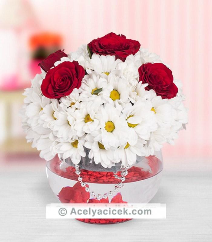 Fanusta Gül Kır Çiçeği