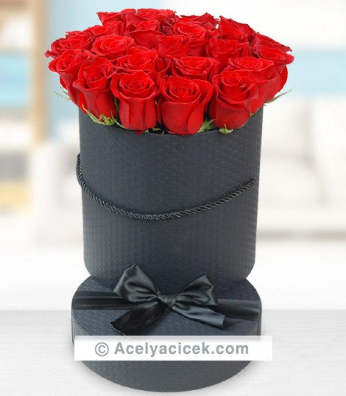 Saklı Güller