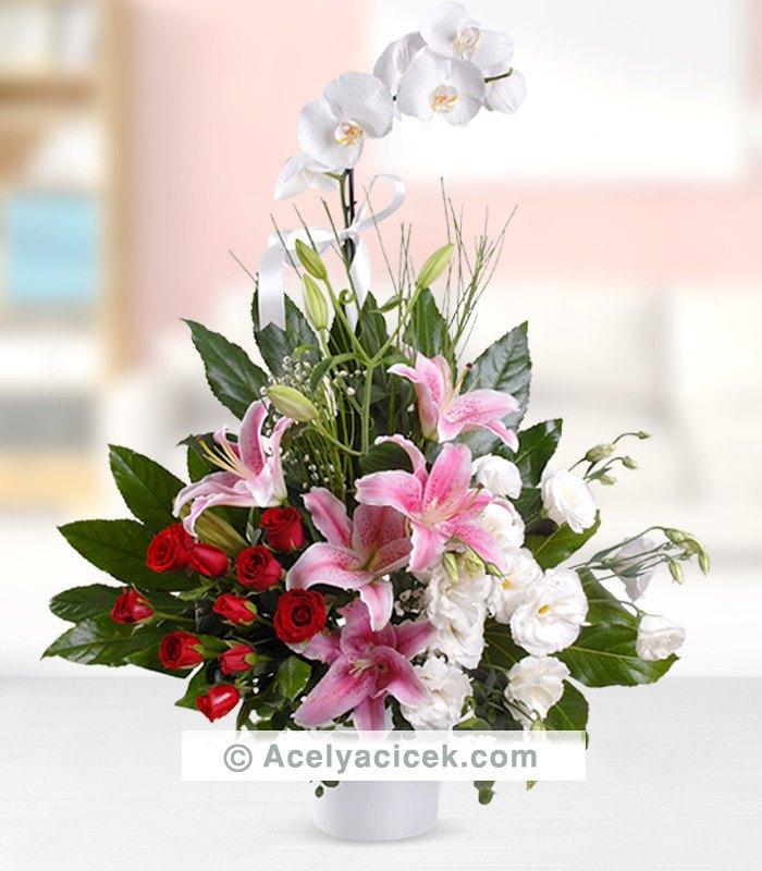 Orkideli Hediye Arajmanı